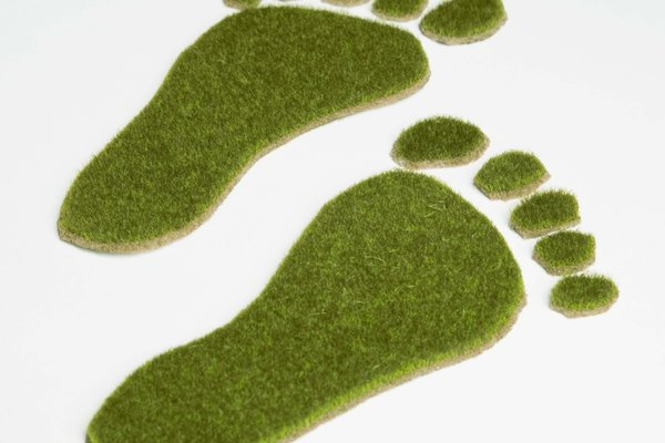 Green grass footprints