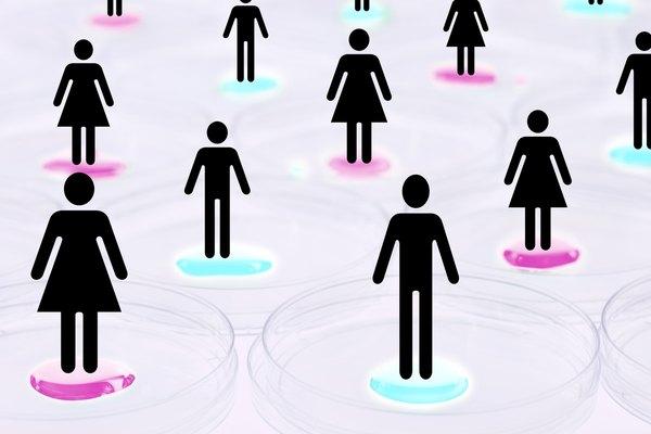 Las relaciones de género es un tema de estudio sociológico.
