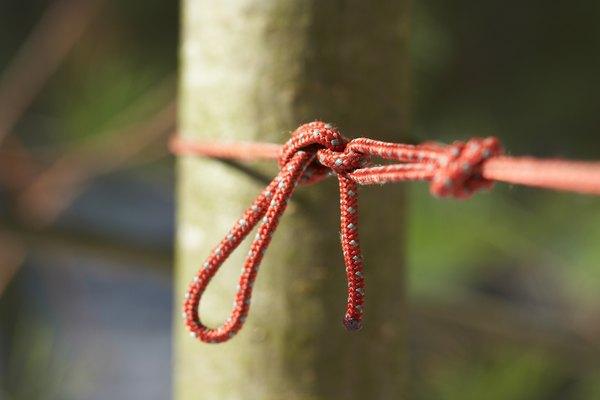 Nudos usados para escalar los árboles.