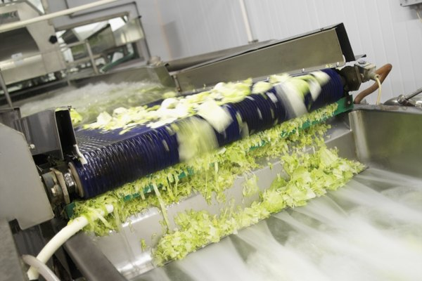 Lettuce being shredded