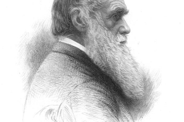 Charles Darwin sugiere que ciertos factores en un ambiente favorecerán a organismos con características beneficiosas.
