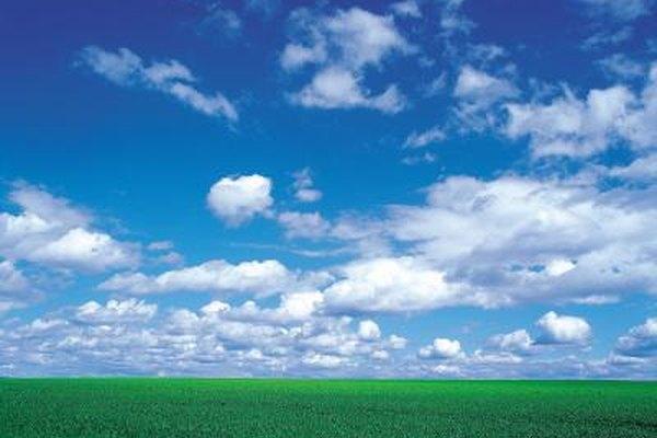 El Departamento de Agricultura de EE.UU. ofrece becas para ayudar a los agricultores en la compra de tierras.
