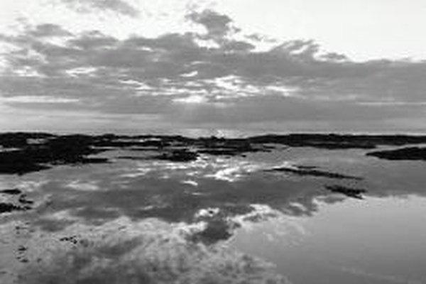 El difuminado en las fotografías en negro y blanco da tonos suaves de color gris.