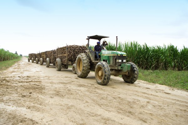 Tractor pulling carts of sugar cane