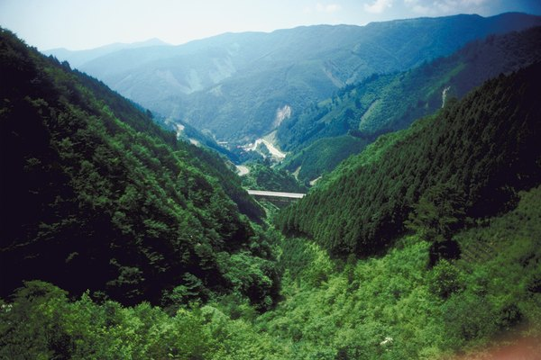 Lush mountains in Japan
