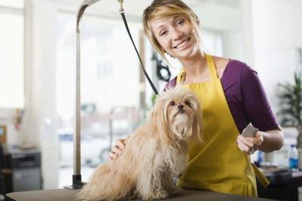 Gana dinero manteniendo a las queridas mascotas seguras y felices.