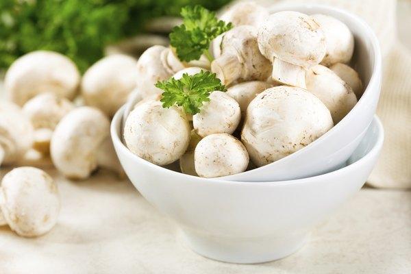 Fresh champignon mushrooms