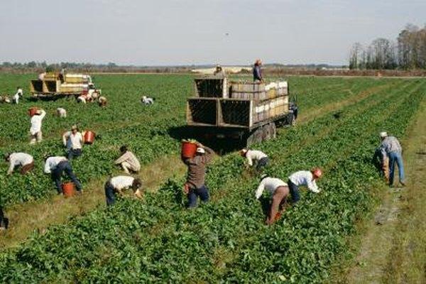 Los costos laborales están relacionados con los niveles de cualificación de los trabajadores.