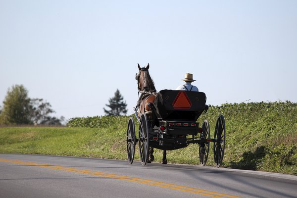 Amish Horse and Cart in Lancaster, Pennsylvania