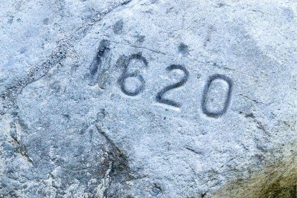 Plymouth Rock Closeup