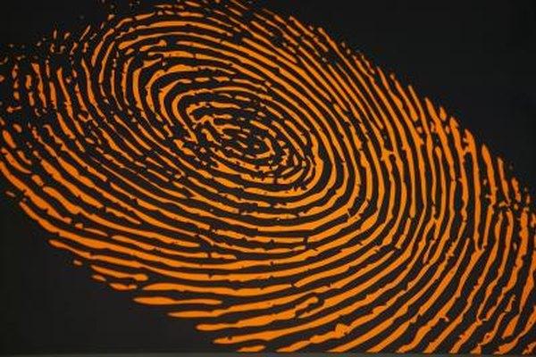Los investigadores forenses recopilan, documentan y analizan las pruebas.