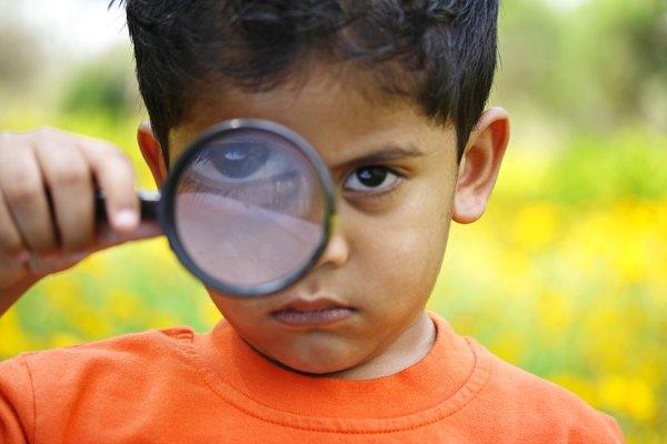 Ayuda a tu joven detective a echar un vistazo más de cerca al mundo.