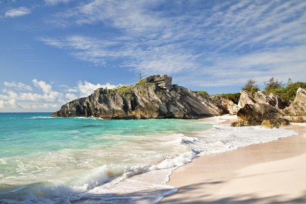 Bermudas.