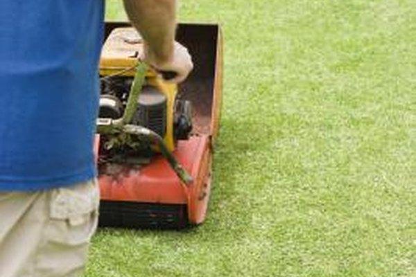 Los empleados domésticos pueden cuidar el césped y dar un mantenimiento al espacio exterior de la propiedad.