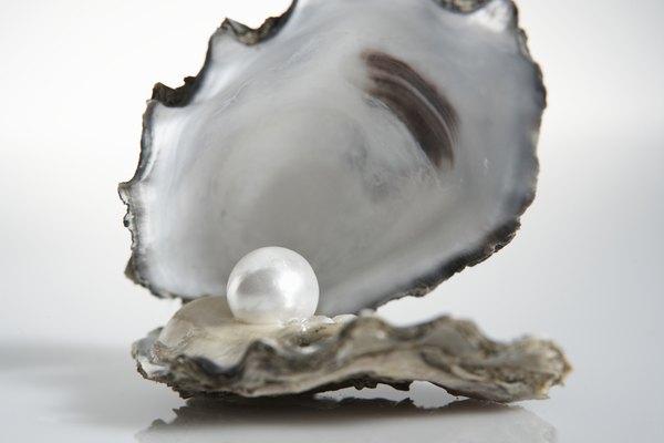 Las ostras son famosas por las perlas naturales que producen.
