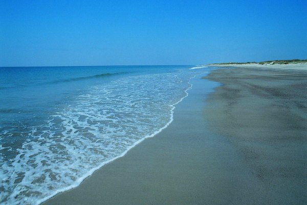 Sandy beach, Cape Fear Area, North Carolina, USA