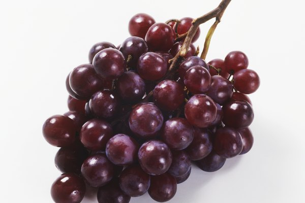 Purple grapes, bunch