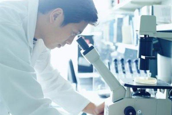 Un científico con una mente cerrada es como una persona que trata de mirar por un microscopio con sus ojos cerrados.