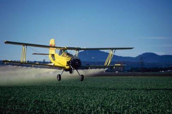Un avión fumigador vuela sobre un campo de tulipanes mientras los rocía con químicos.