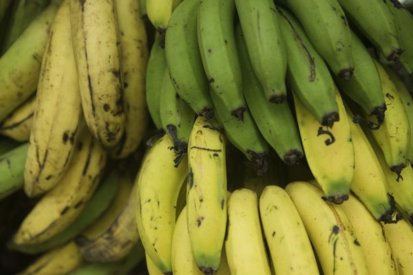 Bananas, full frame, close-up