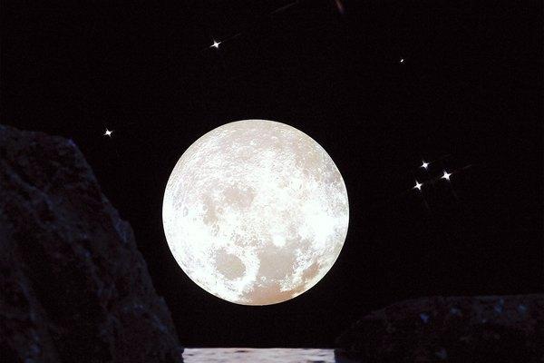 Las fases de la luna y los hámsters.