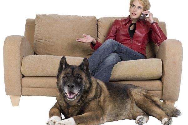No permitas que sentarte en un sofá de microfibra sea arruinado por la estática.
