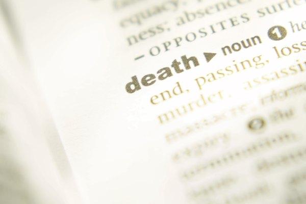 Determina si la palabra representa una idea, persona, lugar o cosa.