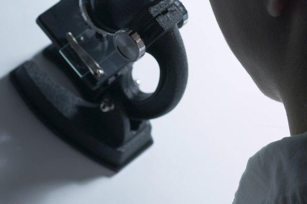 El control de los ácaros del moho requiere de varios métodos de control cultural.