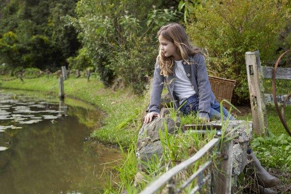 El control de las algas ayudará a mantener saludable el agua del estanque.