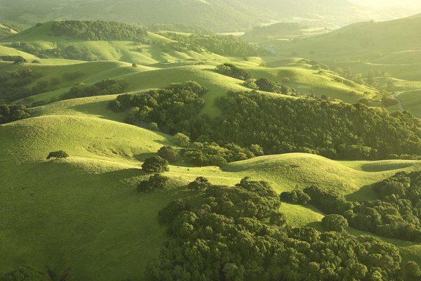 Sunlight shining on lush countryside