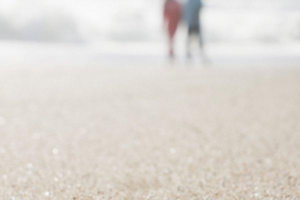 Seca la estrella de mar completamente, preferiblemente en la luz del sol.