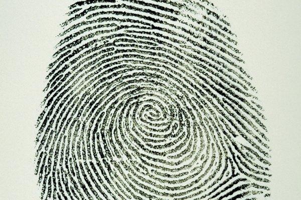 Una huella única puede identificarse por sus patrones de núcleo.