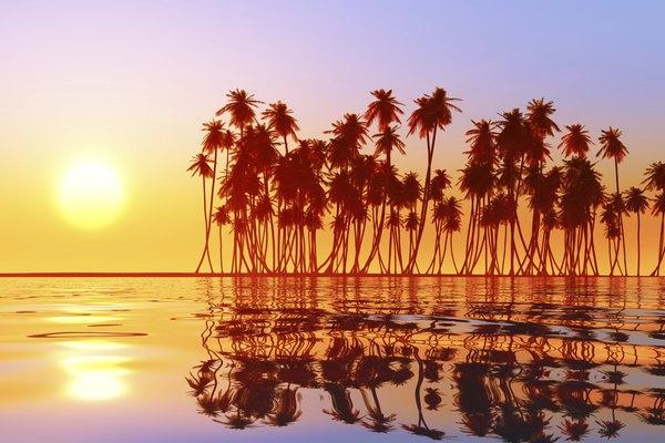 Islas Fiyi.