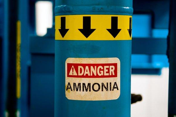 Al amoniaco no se le considera una sustancia peligrosa por casualidad