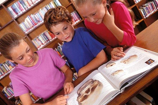 Los libros de estudios sociales y de ciencia en el aula de cuarto grado están llenos de recursos gráficos para explorar.