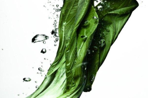Utiliza colorante de comida y apio para demostrar cómo las plantas toman los nutrientes de sus alrededores.