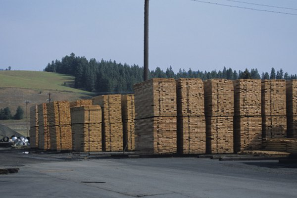 La madera recién cortada siempre debe ser curada antes de usarse.