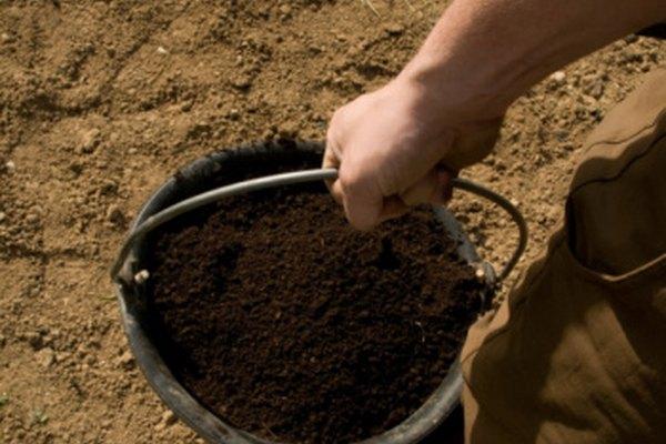 El suelo en el balde puede haber tardado miles de años en formarse.