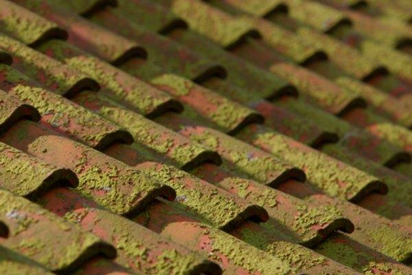 Los listones se utilizan en cada curso de techos de terracota.