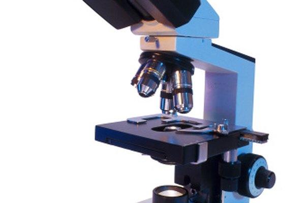 La investigación científica hace uso de herramientas, tales como microscopios.