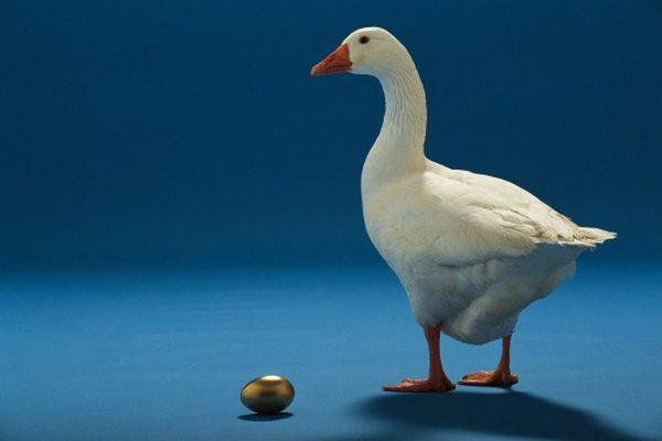 La fábula del ganso de los huevos de oro nos advierte que no debemos ser codiciosos.