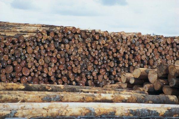 Todo tipo de madera puede retorcerse.