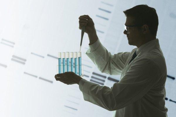 Los investigadores trabajan con ADN extraído de células.