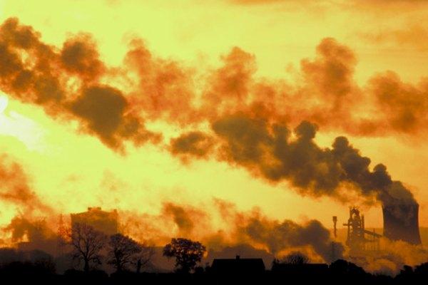 La contaminación ambiental puede dañar el medioambiente al contaminar las reservas de alimentos, lo cual causa problemas de salud y destruye hábitats naturales.