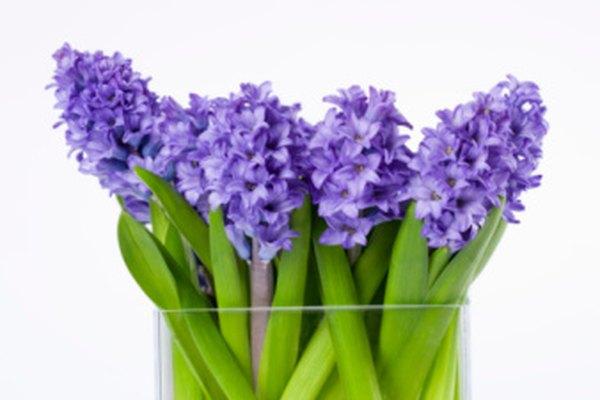 Las flores artificiales se ven realistas con el relleno líquido en el florero.