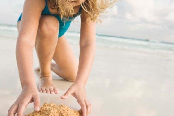 Las estrellas de mar son populares recuerdos de vacaciones en la playa, pero tienen que ser conservadas adecuadamente antes de que puedan ser exhibidas.