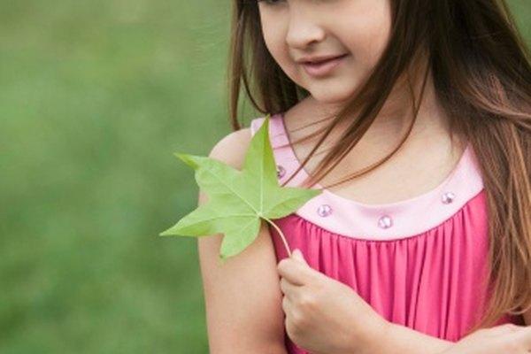 Las actividades con recursos naturales ayudan a los niños del jardín de infantes a aprenden sobre el mundo.