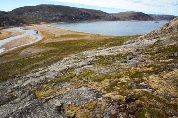 Tanto los factores bióticos y como los abióticos afectan la tundra.
