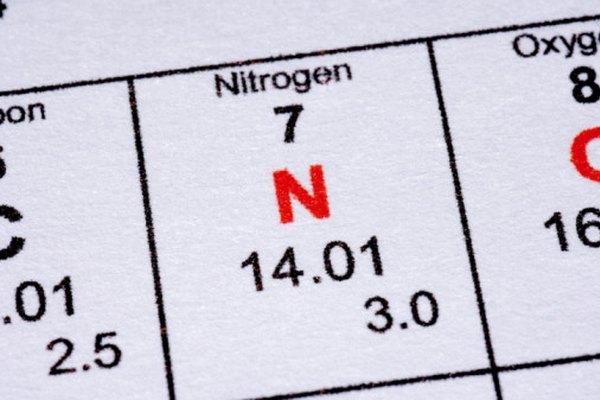 Las plantas y los animales no pueden vivir sin nitrógeno.