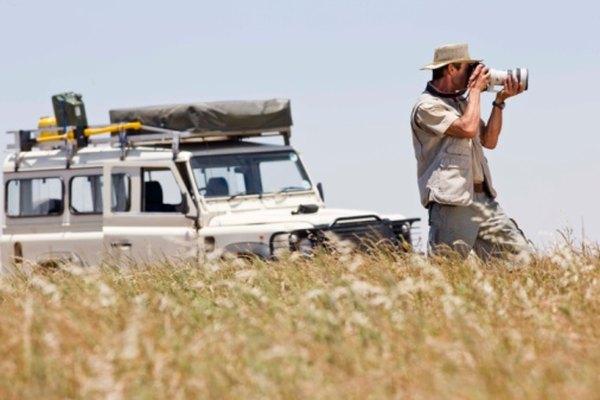 Los fotógrafos puedne tener que viajar a países exóticos para forografiar el hábitat natural de los grandes felinos africanos.